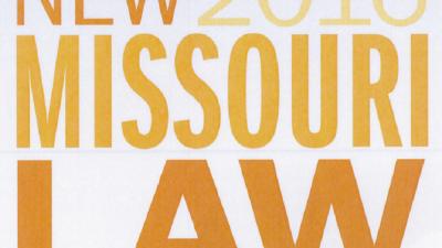 2016 Missouri Law Publication - MCADSV