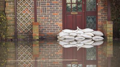 Government and Nonprofit Roles in Natural Disaster Assistance