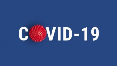 COVID-19 Small Businesses Fact Sheet